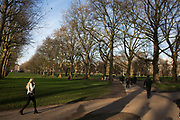 Scene in Green Park in London, England, United Kingdom. The Green Park is one of the Royal Parks of London. It is located in the City of Westminster.