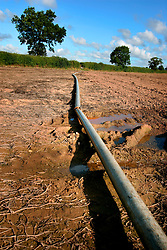 UK ENGLAND NORFOLK WORXHAM 8AUG06 - Irrigation by water dispenser and piping near Wroxham Barns in the Norfolk Broads...jre/Photo by Jiri Rezac..© Jiri Rezac 2006..Contact: +44 (0) 7050 110 417.Mobile:  +44 (0) 7801 337 683.Office:  +44 (0) 20 8968 9635..Email:   jiri@jirirezac.com.Web:    www.jirirezac.com..© All images Jiri Rezac 2006 - All rights reserved.