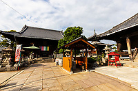 """Temple 77 Doryuji was founded in 749 as an act of repentance for accidentally shooting his nurse with an arrow.  Doryuji Temple was built in 712, when the ruler of this area, Wake no Michitaka, made a small statue of Healing Buddha from a large mulberry tree and built a small hall.  At that time, there were vast mulberry orchards throughout the area, as silk was produced here.  Some of the buildings at Doryuji incorporate wood from mulberry trees.  The principal image is called """"eye rehabilitation""""  and is said to have the benefit of healing the eye diseases especially through the healing waters in the temple grounds."""