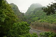 Aowanda Forest Park has a very long suspension bridge.