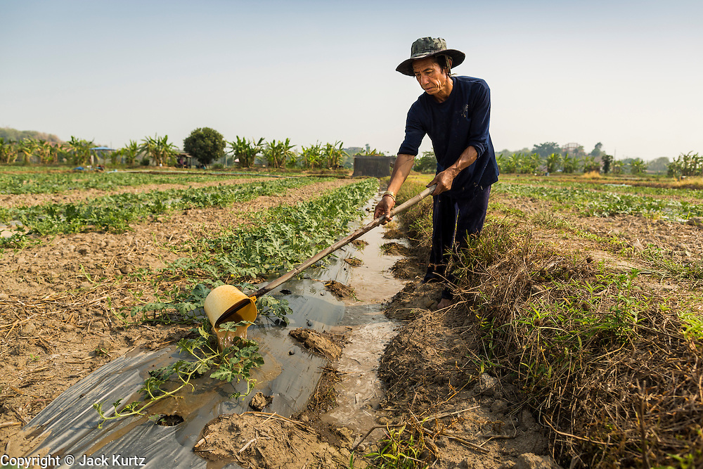 23 APRIL 2014 - CHIANG SAEN, CHIANG RAI, THAILAND: PASIT, a watermelon farmer in Chiang Saen, Thailand, irrigates his fields. He waters the plants every five days. He said he's been growing watermelon for 10 years and used to grow rice but that the money was better with watermelons. Chiang Rai province in northern Thailand is facing a drought this year. The 2014 drought has been brought on by lower than normal dry season rains. At the same time, closing dams in Yunnan province of China has caused the level of the Mekong River to drop suddenly exposing rocks and sandbars in the normally navigable Mekong River. Changes in the Mekong's levels means commercial shipping can't progress past Chiang Saen. Dozens of ships are tied up in the port area along the city's waterfront.               PHOTO BY JACK KURTZ