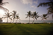 The sun sets over a green field that borders a stunning Dominican Republic Beach