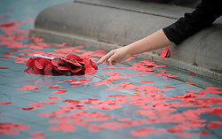 © London News Pictures. 11/11/2011. London, UK. Students from Northfleet Technology College for boys and Northfleet School for Girls release poppy reefs into the fountains at Trafalgar Square, London today (11/11/2011) before a 2 minute silence at a Remembrance day ceremony. Photo Credit : Ben Cawthra/LNP