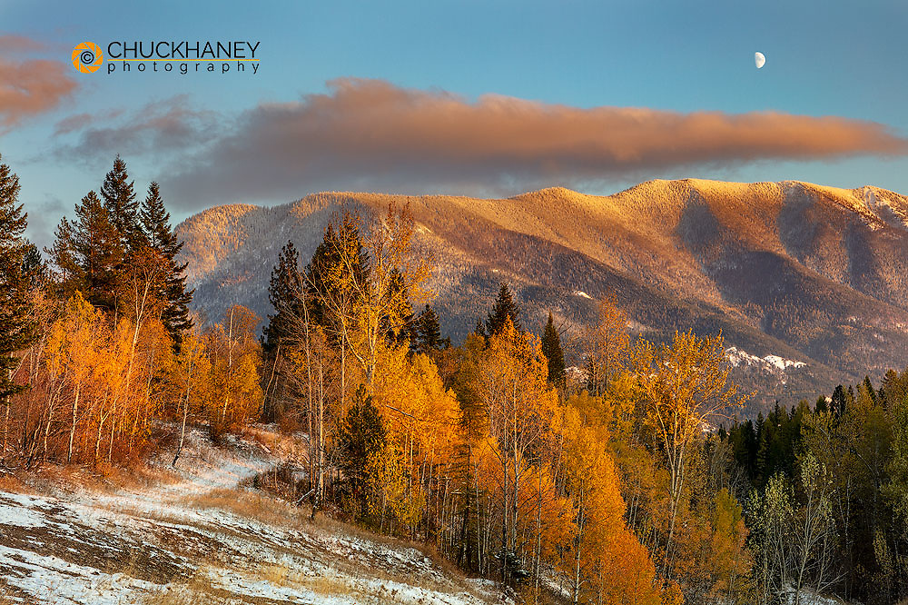 Half Mooon rises above Columbia Mountain in autumn in Columbia Falls, Montana, USA