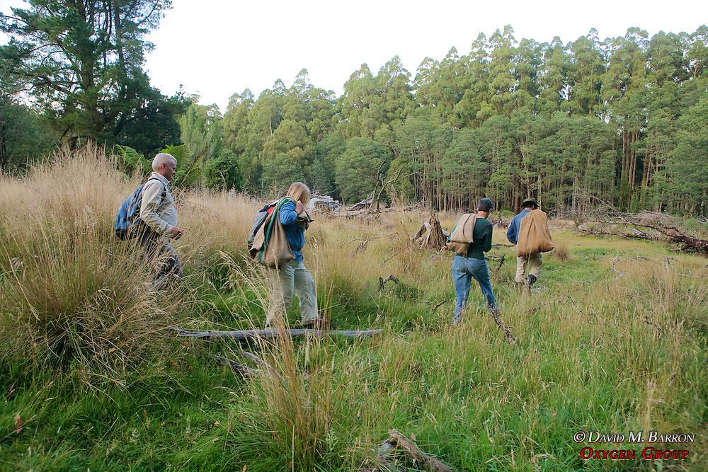 Hugh, Pat, David & Jean Bringing Possums For Release
