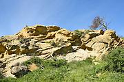 Rooster Rock at Irvine Regional Park