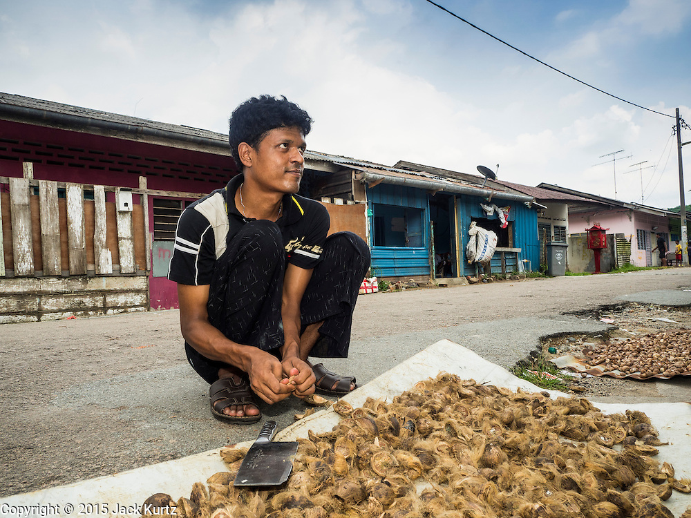 01 JUNE 2015 - KULAI, JOHORE, MALAYSIA:  A Rohingya refugee man sells betel nut on a street in a Rohingya community in Kulai, Malaysia. This informal work is the only work he can find. The UN says the Rohingya, a Muslim minority in western Myanmar, are the most persecuted ethnic minority in the world. The government of Myanmar insists the Rohingya are illegal immigrants from Bangladesh and has refused to grant them citizenship. Most of the Rohingya in Myanmar have been confined to Internal Displaced Persons camp in Rakhine state, bordering Bangladesh. Thousands of Rohingya have fled Myanmar and settled in Malaysia. Most fled on small fishing trawlers. There are about 1,500 Rohingya in the town of Kulai, in the Malaysian state of Johore. Only about 500 of them have been granted official refugee status by the UN High Commissioner for Refugees. The rest live under the radar, relying on gifts from their community and taking menial jobs to make ends meet. They face harassment from Malaysian police who, the Rohingya say, extort bribes from them.       PHOTO BY JACK KURTZ