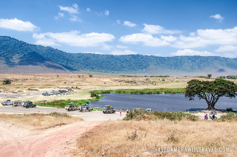 One of the few designated picnic areas at Ngorongoro Crater in the Ngorongoro Conservation Area, part of Tanzania's northern circuit of national parks and nature preserves.