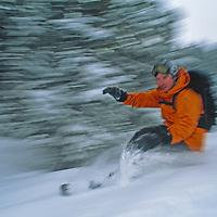 Snowboarder rides new powder snow at Bridger Bowl ski area.