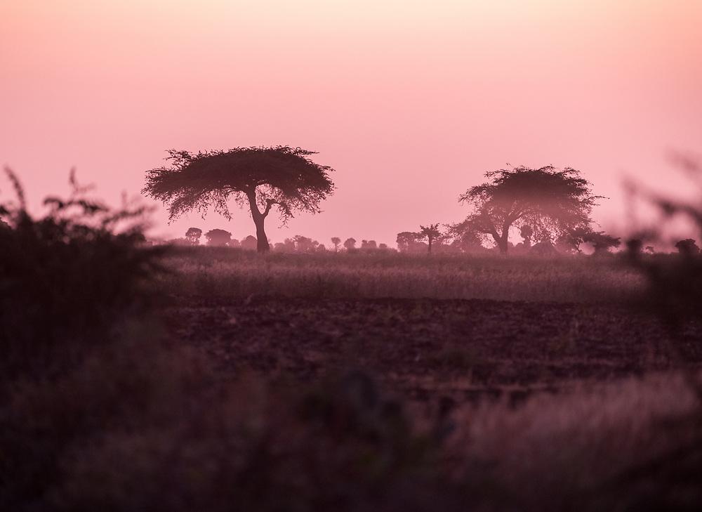 27 January 2019, Bale Zone, Oromia, Ethiopia: Dawn breaks near Ginnir in the Bale Zone of Ethiopia.