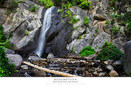 20x30 poster print of a small waterfall that is hidden in the forest.