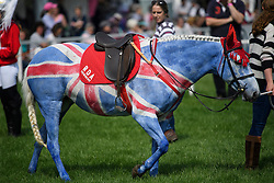 © London News Pictures. 12/05/2016. Windsor, UK. A horse painted in the Union Flag aka the Union Jack on the first day of the 2016 Royal Windsor Horse Show, held in the grounds of Windsor Castle in Berkshire, England. The opening day of the event was cancelled due to heavy rain and waterlogged grounds. This years event is part of HRH Queen Elizabeth II's 90th birthday celebrations.  Photo credit: Ben Cawthra/LNP