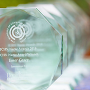 23.05.2018.       <br /> Today, the Institute of Community Health Nursing (ICHN) hosted its2018 community nurseawards in association withHome Instead Senior Care,at its annual nursing conference, in the Strand Hotel Limerick, rewarding public health nurses for their dedication to community care across the country. Picture: Alan Place