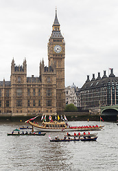 © Licensed to London News Pictures. 11/05/2014. London, UK. The Royal Barge, Gloriana and an accompanying flotilla passes Big Ben and the Houses of Parliament on the River Thames during the Royal Waterman Tudor Pull on 11th May 2014. The Tudor Pull is a ceremonial event for Thames Watermen's Cutters which is organised each year by the Thames Traditional Rowing Association (TTRA). The flotilla finishes at the Tower of London to deliver a 'Stela' to the Governor of the Tower for safekeeping. Photo credit : Vickie Flores/LNP