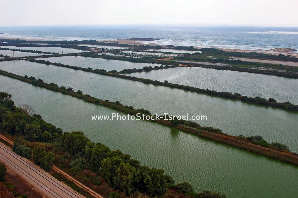Agricultural fish ponds on the coastal plains, Israel