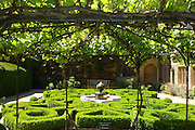 An intricate, curvacious box parterre with central Islamic style ceramic-tiled fountain,  glimpsed through a vine-covered pergola. The feathery green heads of exotic papyrus plants rise from pots at the four corners of the garden. <br /> <br /> Date taken: 21 June 2010.
