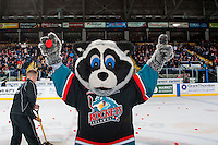 KELOWNA, CANADA - FEBRUARY 10: Scotiabank puck toss during second intermission at the Kelowna Rockets against the Vancouver Giants on February 10, 2017 at Prospera Place in Kelowna, British Columbia, Canada.  (Photo by Marissa Baecker/Shoot the Breeze)  *** Local Caption ***