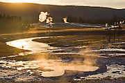 Steam rises, backlit by sunset, from the geysers and hots springs in Upper Geyser Basin in Yellowstone National Park, Wyoming.