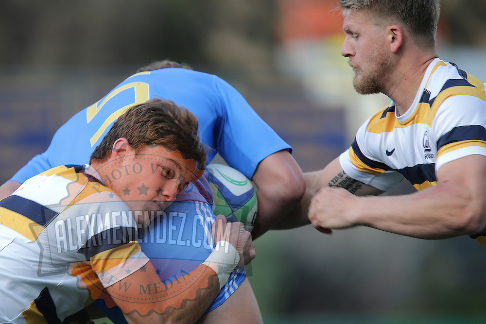BERKELEY, CA - NOVEMBER 08:  Luke Hoffman #5 of UCLA is tackled by Jesse Milne (R) and Thomas Robles during the PAC Rugby 7's Championship between UCLA and California at Witter Rugby Field at the University of California on November 8, 2015 in Berkeley, California. California won the match by a score of 17-5. (Photo by Alex Menendez/Getty Images) *** Local Caption *** Luke Hoffman; Jesse Milne; Thomas Robles