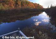 Cranberry Bog Wildlife Sanctuary, Monroe Co., PA