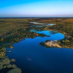 """""""Banhado com Ninhal das Garças Aérea (Paisagem e Ardeidae) fotografado em Corumbá, Mato Grosso do Sul. Bioma Pantanal. Registro feito em 2017.<br /> <br /> <br /> <br /> ENGLISH: Puddle and Nest Colony Aerea photographed in Corumbá, Mato Grosso do Sul. Pantanal Biome. Picture made in 2017."""""""