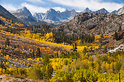 Eastern Sierra Mountains.  Fall color in the Bishop Creek drainage and the Palisade Mountains