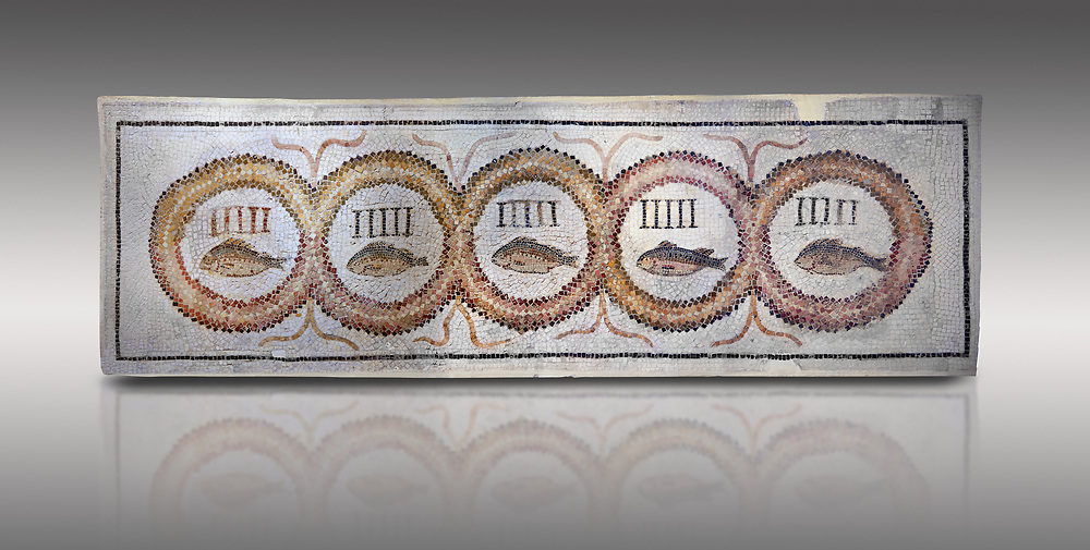 Pictures of a geometric Roman doorstep mosaics depicting five fishes surrounded by bars and a medallion, from the ancient Roman city of Thysdrus. 3rd century AD The Small Baths in the M'barek Rhaiem area. El Djem Archaeological Museum, El Djem, Tunisia.<br /> <br /> The mosaic depicts the emblem of the Pentasii, a powerful Nortyh African Roman association that organised and  maintained the wild animals and hired animal killers to carry on the games in ampitheatres. .<br /> <br /> If you prefer to buy from our ALAMY PHOTO LIBRARY Collection visit : https://www.alamy.com/portfolio/paul-williams-funkystock/roman-mosaic.html . Type - El Djem - into the LOWER SEARCH WITHIN GALLERY box. Refine search by adding background colour, place, museum etc<br /> <br /> Visit our ROMAN MOSAIC PHOTO COLLECTIONS for more photos to download as wall art prints https://funkystock.photoshelter.com/gallery-collection/Roman-Mosaics-Art-Pictures-Images/C0000LcfNel7FpLI