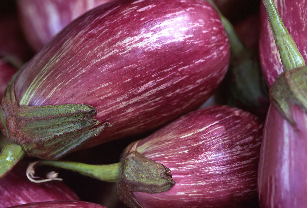 Extreme selective focus close up photograph of some raw Lilac Bride Eggplants