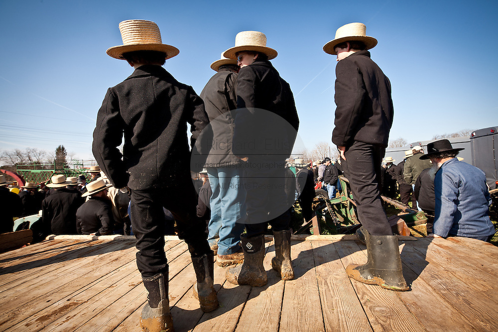 Amish boys watch the auction during the Annual Mud Sale to support the Fire Department  in Gordonville, PA.