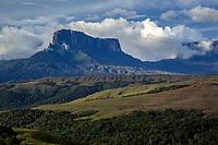 Kukenan Tepui, Gran Sabana, Venezuela