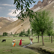 Wakhi women bringing back wood. Darkot village, Yasin valley.