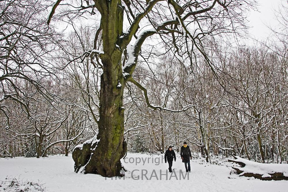 Two men walk across snow-covered Hampstead Heath, North London, United Kingdom