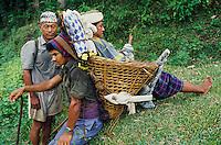 Nepal, porteurs, Les routiers de l'Himalaya, malade porté vers un hopital à 2 jors de marche. // Nepal, Porter of Himalaya, Sick person on the way to hospital after 2 days walk.