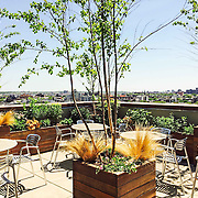 Greenpoint Roof Terrace