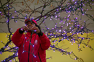 Angel Scott strings up a tree with purple colored lights as she helps get downtown South Bend ready for the holidays.