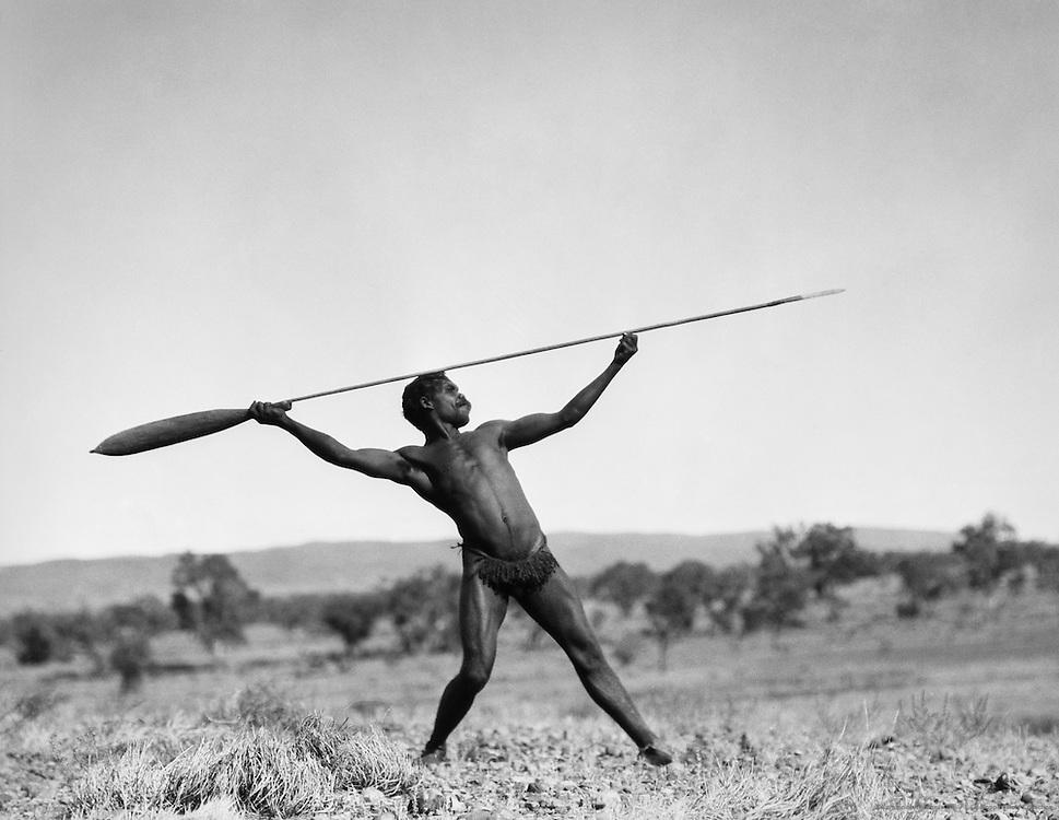 Aboriginal spear thrower, Central Australia, 1930