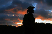 Farmer Joel Salatin is silhouetted in the morning light while tending to his chickens at the Polyface Farm October 20, 2006 in Staunton, Va.