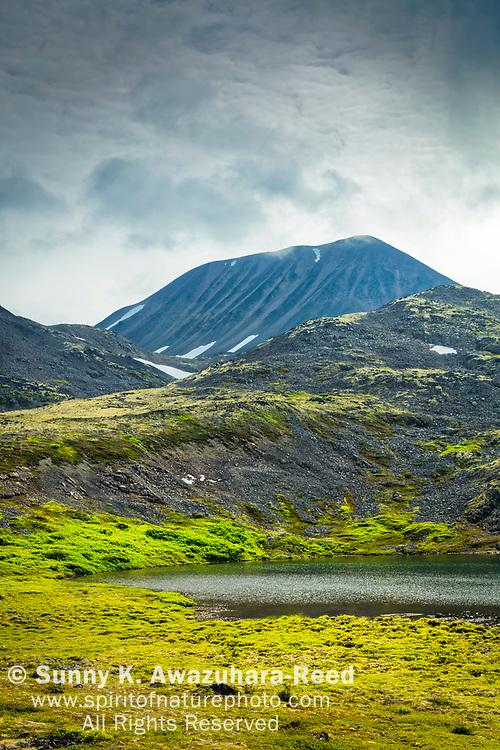 Kesugi Mountain above alpine tundra and lake, Kesugi Ridge, Denali State Park, Southcentral Alaska, Summer. Vertical image.