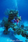 diver and old anchor,<br /> Grand Turk, Turks & Caicos Islands,<br /> ( Western Atlantic Ocean )  MR 44