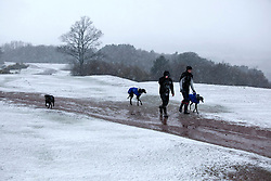 © Licensed to London News Pictures. 04/04/2012. Clent, Worcsestershire, UK. Snow covers the Clent Hills in Worcestershire. A snowy Spring Wonderland a top the Clent Hills in Worcestershire. Photo credit : Dave Warren/LNP