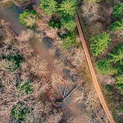 Goose Creek in the Hughes River Wildlife Management Area near Walker, West Virginia. Spring.