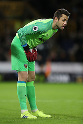 """West Ham United goalkeeper Lukasz Fabianski during the Premier League match at Molineux, Wolverhampton. PRESS ASSOCIATION Photo. Picture date: Tuesday January 29, 2019. See PA story SOCCER Wolves. Photo credit should read: David Davies/PA Wire. RESTRICTIONS: EDITORIAL USE ONLY No use with unauthorised audio, video, data, fixture lists, club/league logos or """"live"""" services. Online in-match use limited to 120 images, no video emulation. No use in betting, games or single club/league/player publications."""