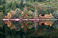Early Fall colour at Silver Lake in Silver Lake Provincial Park near Hope, British Columbia, Canada