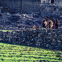 Villagers plow barley fields below an old stone city in the Muktinath Valley north of Annapurna in Nepal.