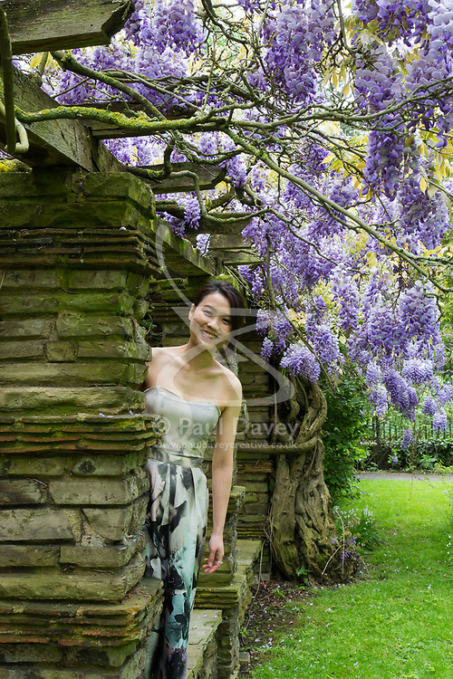 Bride-to-be Catherine Suen poses for engagement pictures as Wisteria blooms at Wells Hall Pleasuance Gardens in Eltham, South East London.May 13 2018.