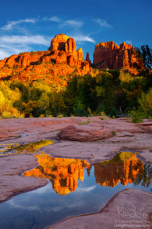 Cathedral Rock, a 4,967 foot (1,514 meter) sandstone butte, is reflected in a small pool near Oak Creek in Sedona, Arizona. Cathedral Rock is located in the Coconino National Forest.