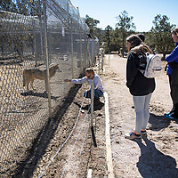 Jessica Schmidt, center, leads the Houde-Camirand family on a tour Tuesday, March 5, at Wild Spirit Wolf Sanctuary in Candy Kitchen.