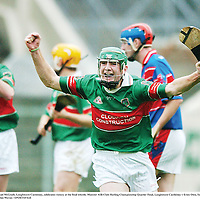 4 November 2007; Noel McGrath, Loughmore-Castleiney, celebrates victory at the final whistle. Munster AIB Club Hurling Championship Quarter Final, Loughmore-Castleiney v Erins Own, Semple Stadium, Thurles, Tipperary. Picture credit; Brendan Moran / SPORTSFILE
