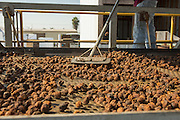 Fig sorting