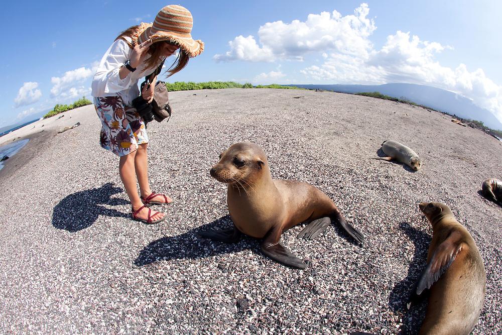Young woman looking at Galapagos Sea Lions on beach in the Galapagos Islands, Ecuador.